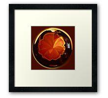Tulip in spherical Framed Print