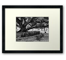 Buenos Aires - Plaza Vicente López Framed Print