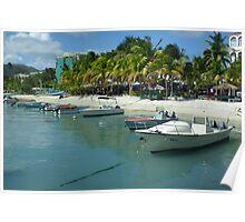 Caribbean Fleet Poster