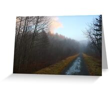 Early Morning Mist - Laurentiens Bike Path Greeting Card