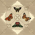 Butterfly Code by petitestitches