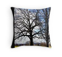 The Dwelling Place Throw Pillow