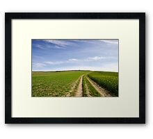 Colour Specles in Blue and Green Landscape Framed Print