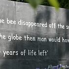 Be good to Bees - Einstein Quote by zoemancroft
