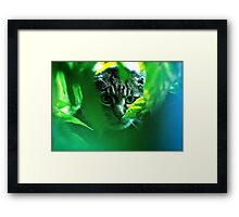 My   F   A   V   O   R   I   T   S  !   Warrior Cats Theme Songs  . by Brown Sugar . Tribute to Wild World - Cat Stevens . VIEWS (667). Featured . MYSTERIES OF THE PAST AND PRESENT . Thanks !!! Framed Print