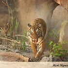 Tigerrrrrrrrrr by Misti Love