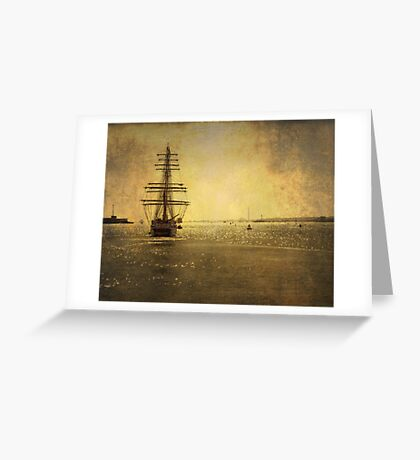 STS Stavros S Niarchos Greeting Card