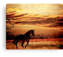 Rounder Canvas Print
