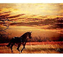 Rounder Photographic Print