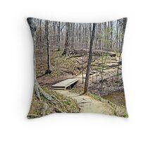 Lake Trail Throw Pillow