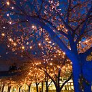Blue Trees with Twinkling Blossoms by Tracy Riddell