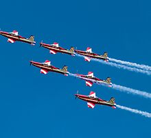 Roulettes by cherryw