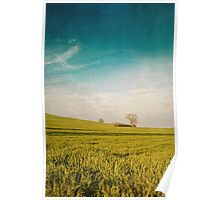 Meadow and Sky Poster