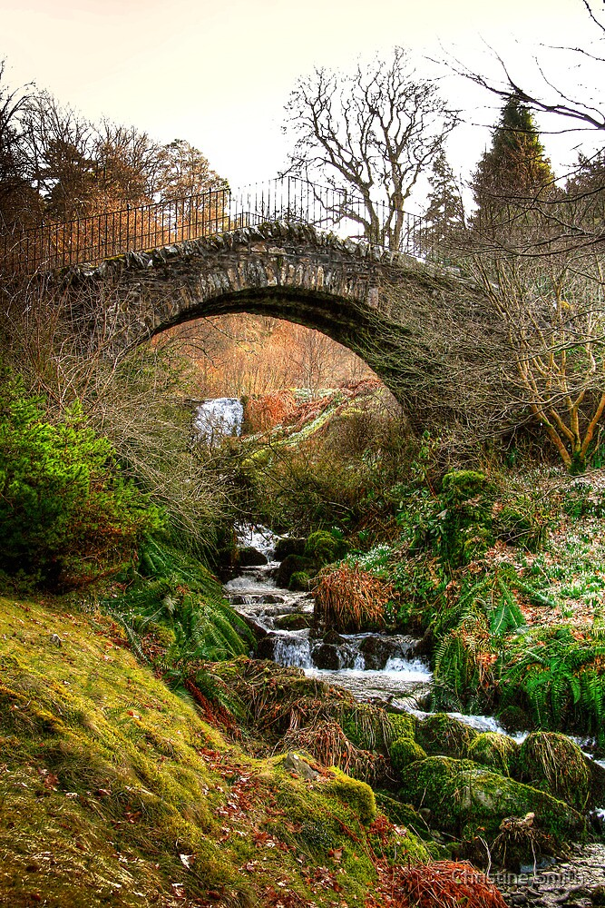 Stone Bridge, Dawyck Botanic Garden by Christine Smith