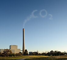 CO2 is Good for You (In moderation) by Andrew Holford