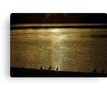 Ducks on the Manning Canvas Print