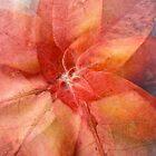 Patterned pinkness by Howard Gwynne