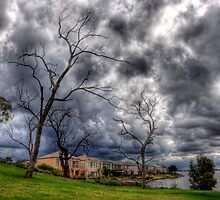 Dead trees at Lake Mulwala by Leigh Monk