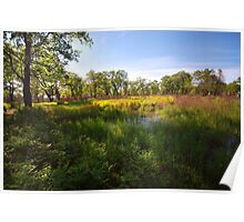 Hoosier Prairie State Nature Preserve Poster
