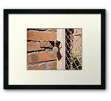 Detail of the gate of the metal mesh that are closed to the padlock Framed Print