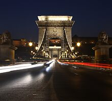 Chain Bridge, Budapest, Hungary by Timothy Alberry