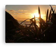 Sunset at Manu Bay, Raglan Canvas Print