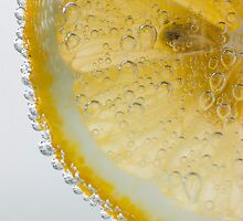 Citrus 1 by pauldwade