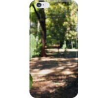 Selective focus on a young branch of a tree with leaves iPhone Case/Skin