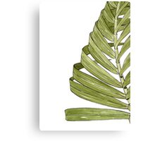 Palm Leaf - Olive Canvas Print