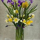 Daffodils and Irises by Miroslava Balazova Lazarova