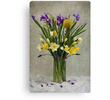 Daffodils and Irises Canvas Print