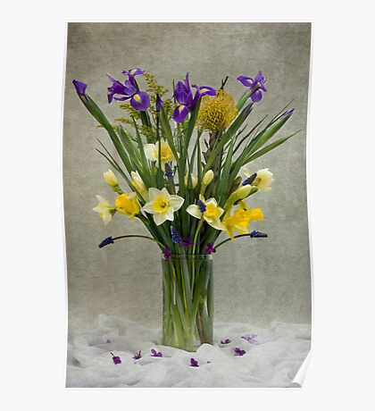 Daffodils and Irises Poster