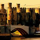 &quot;CONWAY CASTLE&quot; [for fazza] by snapitnc