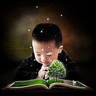 The magic of stories by Adara Rosalie