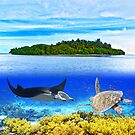 Maldives atoll by MotHaiBaPhoto Dmitry & Olga