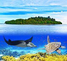 Maldives atoll by MotHaiBaPhoto Dmitry & Olga