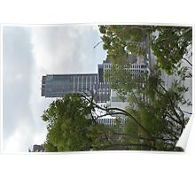Brisbane City through the trees Poster