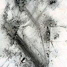 River Wild - graphite powder illustration by Victoria limerick