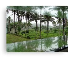 Wet Hot Humid Tropical Canvas Print
