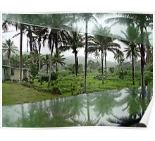 Wet Hot Humid Tropical Poster