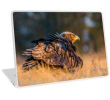 Bird of Prey - Steppe Eagle Laptop Skin