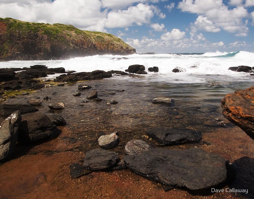 Rock Pool - The Blowhole, Mornington Peninsula by Dave Callaway