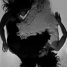 ying/yang by Jacek Lidwin