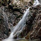 Froda Stream by jimmylu