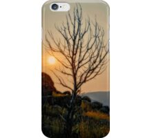 Butte Montana - Sunrise Lighting My Branches iPhone Case/Skin