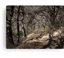 The Bunyip's Lair Canvas Print