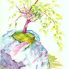 Bonsai Tree by Pauline Persing