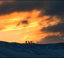 A Winters Sunset - Cheltenham, UK by Nate Hallett