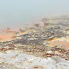 Geothermal pool by Heather Thorsen