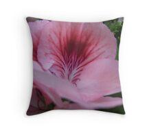 Martha Washington Shades of Pink Geranium  Throw Pillow